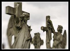 Angels and Crosses LB (veggiesosage) Tags: nottingham church cemetery graveyard lensbaby gx20 aficionados rockcemetery andyplattveggiesosage