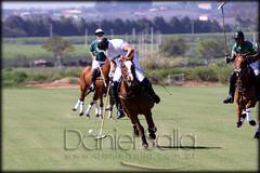 Zoff Club x Itaipava - 002 (Daniel Salla Fotografia) Tags: horse play tacos campo helvetia campeonato cavalo polo brasileiro tem copa jogos zoff itaipava vilage bochas mitsubshi jogdor