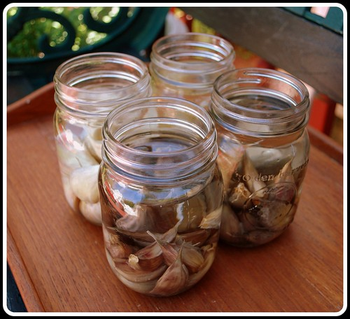 Garlic in jars