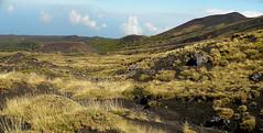 Monti Sartorius - Etna nord (Rianetna) Tags: crater monte etna monti cratere sartorius crateri linguaglossa etnanord