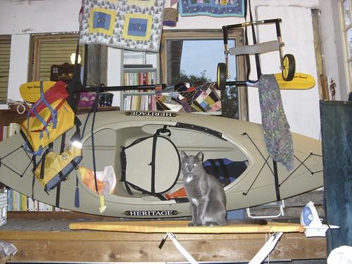 Vinson on ironing board