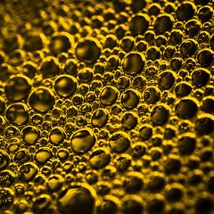 Bubble Army (Onigun) Tags: abstract color photography nikon bokeh bubbles photoaday 365 challenge project365 nikond700 onigun onigunstudio