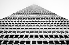 One More Time (Thomas Hawk) Tags: sanfrancisco california blackandwhite bw usa architecture blackwhite downtown unitedstates 10 unitedstatesofamerica william fav20 financialdistrict transamerica fav30 transamericapyramid transamericabuilding pereira fav10 williampereira fav25 williamlpereira pereria superfave