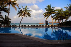 Just me n' the pool (juliaclairejackson) Tags: ocean morning blue sun holiday hot reflection tree beautiful swim island early paradise quiet turquoise palm palmtrees heat tropical idyll maldives idyllic tranquil 7am meeru solitute lengths