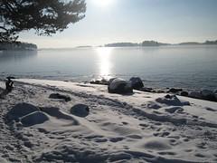 A feeling of spring (Timetamer) Tags: winter talvi vuosaari aurinkolahti