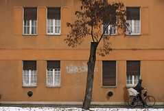 Thawing (sonofsteppe) Tags: life street old city windows winter urban house snow man cold detail building tree art weather bicycle yellow wall architecture facade dark 50mm daylight wooden stem hungary cyclist exterior outdoor walk seasonal budapest overcast dirty explore human shutter environment moment ochre snowfall exploration passerby carry thaw stucco carrying thawing bole scribbled wallscape sonofsteppe pusztafia zugló urbanlifeoftrees