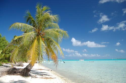 Paradise Bora Bora (by msdstefan)