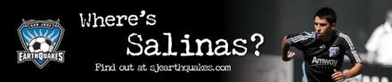 Salinas Banner