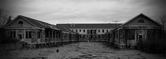 (Nicole Lungaro) Tags: ny building abandoned broken overgrown vines nikon village dismal decay u letchworth d40x