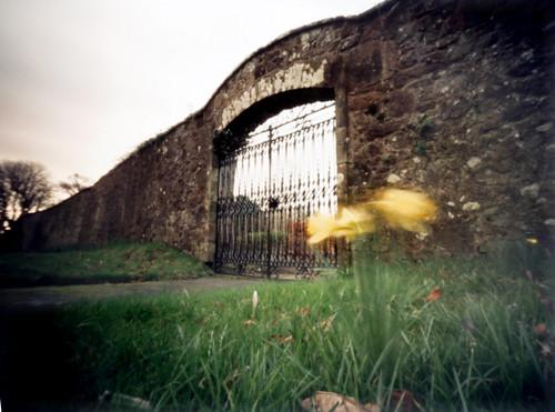 Hunterston garden gate 20Mar09