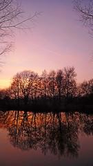 sunset 1 (Mark Watson (kalimistuk)) Tags: trees sunset sky lake color colour wet water clouds lumix panasonic twigs dmc bestwood lx3