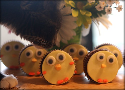 Spooky Bear Approves of the Spring Chick Cupcakes