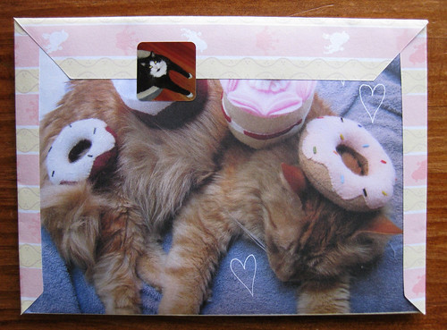 Stuff on my cat fold and mail: doughnut surprise