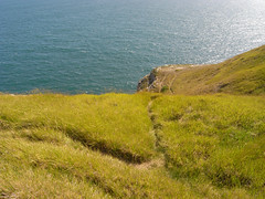 paths (the incredible how (intermitten.t)) Tags: sea sky cliff grass coast coastal edge dorset cliffedge jurassiccoast 050709 dorsetcoast 5655 pths neardancingledge