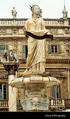 Piazza Delle Erbe (Houry Photography -on/off) Tags: italy fountain statue canon photography lion verona venetian sculptures madona bldgs piazzadelleerbe houry