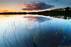 Last light on the weeds (Rob Orthen) Tags: trees sky lake reflection forest suomi finland landscape weeds nikon europe rob 09 scandinavia dri summerevening maisema vesi sysm kes pinta d300 jrvi auringonlasku heijastus gnd salajrvi digitalblending nohdr orthen leefilters lakefinland stillsurface roborthenphotography alemdagqualityonlyclub tokina1116mm28