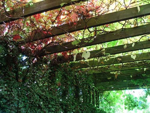 Dewstow Gardens 04