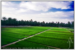 Onaizah Farm (AlTurki Farm) (Abdullah alJaber > AJ.SA) Tags: life beautiful wonderful aj photography one living photo amazing nice nikon shoot photos farm like best photograph saudi arabia nikkor 18200 hamad shooters niceone ksa abdullah d300  qassim      alturki digitalcameraclub  aljaber       onizah       onaizah    unayzah