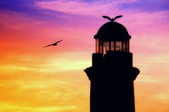 Old lighthouse (Theophilos) Tags: lighthouse colors birds crete rethymno