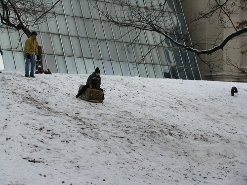 This Just In: Advances in Sledding Techniques | Flickr - Photo ...