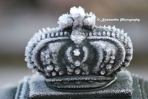 The crown in frost...