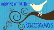 twitter-birdsm