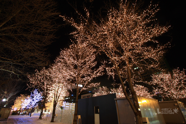 2009北海道-D2-8-大通公園電視塔_17.jpg
