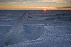 Ice Sunset (Images By DJW) Tags: minnesota icefishing millelacs