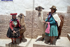 llama and girls with ethnic cloths at Cusco by Ik T