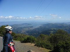 Surfy_does_Mt_Tam-45 (Kent Woodlands, California, United States) Photo