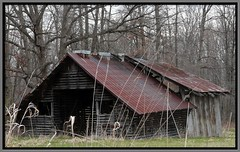 Corncrib and Shed (chippewabear) Tags: old barn rural fdsflickrtoys farm shed abandonded corncrib
