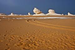 (658) tracks in the sand (avalon20_(mac)) Tags: africa travel blue sky sahara nature geotagged sand desert egypt 500 misr eos40d schulzaktivreisen