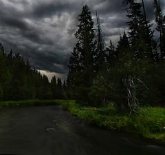 Deschutes River, Oregon (Kyle Kruchok) Tags: cloud storm tree grass oregon forest river stream bend deschutes thunder cultislake