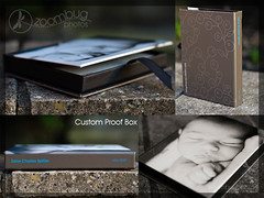 Proof box (.aseel.) Tags: customdesign proofbox keepsakebox