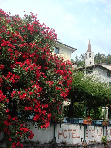 Tessin - Ticino - Lago Lugano 26.8.09