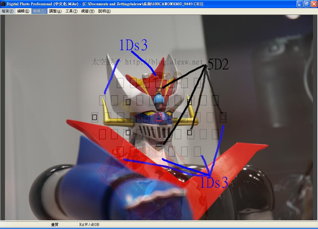 1Ds3 5D2 對焦點比較