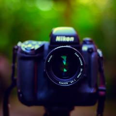 The Legendary Nikon F5 | Tribute (wazari) Tags: camera glass square lens photography 50mm photo photographer bokeh picture 50mm14 passion nikkor f5 kamera nikonf5 nikoncamera ilovenikon wazari wazariwazir