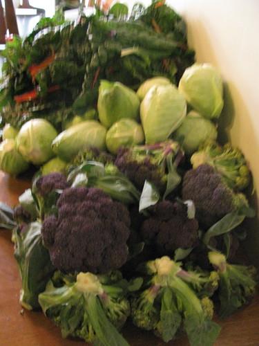 chard cabbage broc