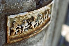 (Nam2@7676) Tags: film japan 35mm tokyo dof pentax bokeh scan mc tsukiji m42  epson  flektogon 100  mz3 nam2 centuria carlzeissjena 3524 silverfast 7676 v750 justpentax gtx970 yasunarinakamura  carlzeissjenamcflektogon35mmf24 nam27676
