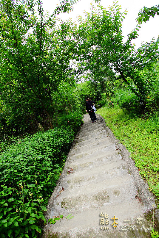 [新北三峽下午茶景觀餐廳] 花岩山林