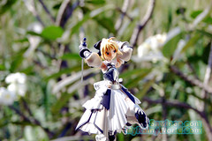 saber_lily_035 (MyRainyWorld) Tags: night lily fate figure saber unlimited stay codes typemoon fatestaynight figma fateunlimitedcodes myrainyworld saberlily unlimitedcodes myrainyworldfigure