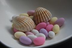 Sugar Shells 1 (Merchant Venturer) Tags: stilllife shells macro modern seashells sweet pastel funky sugar attractive sugaredalmonds pastelcolours