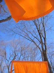 IMG_0024 (DutchAstrid) Tags: new york nyc newyorkcity orange newyork art gates centralpark saffron christo gatesmemory