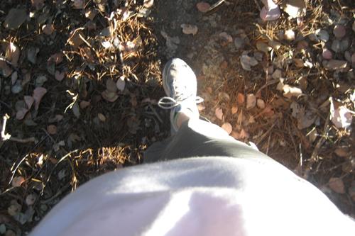 taking my bump for a walk