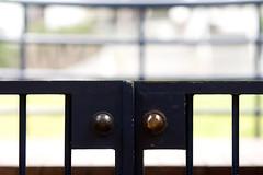 Thing 4: Gate