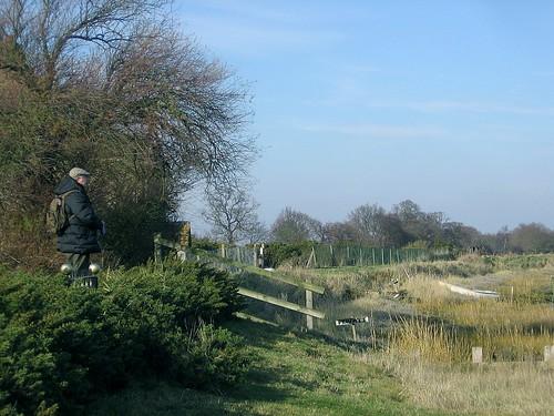Deben Estuary Walk