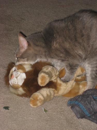 sheldon loving lion toy