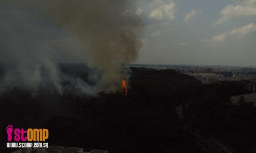 Yet another bush-fire at Bukit Batok