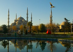 My Postcard Shot of Blue Mosque (treyboone) Tags: blue sunrise turkey nikon d70 turkiye istanbul mosque 1855 turchia turkei mywinners concordians