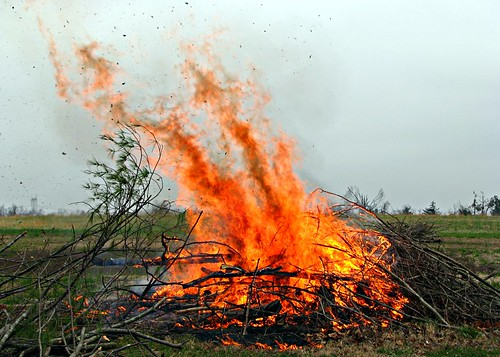 the burning of the brush pile
